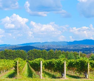 Luxury Yarra Valley Holidays