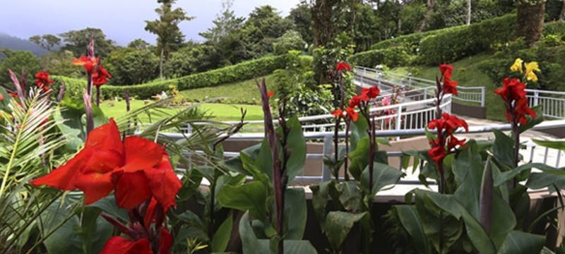 Garden view, Trapp Family Hotel