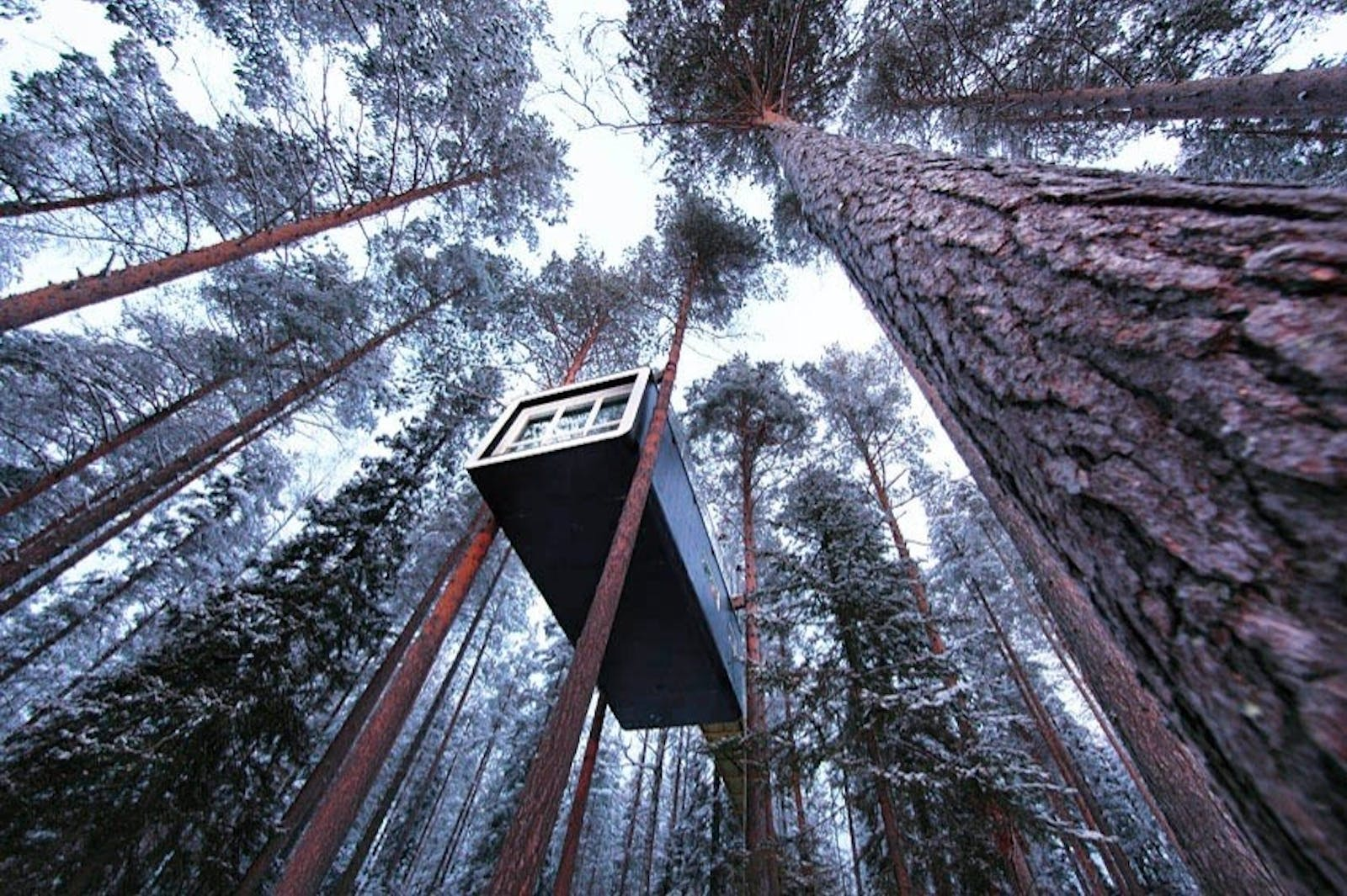 The flying Cabin, Treehotel, Sweden
