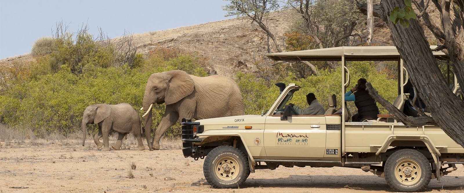 Game Drive at Mowani Mountain Camp