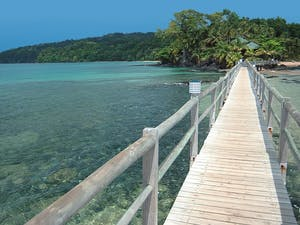 Bridge to Bom Bom Island Resort