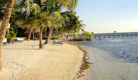 cayo district  ambergris caye