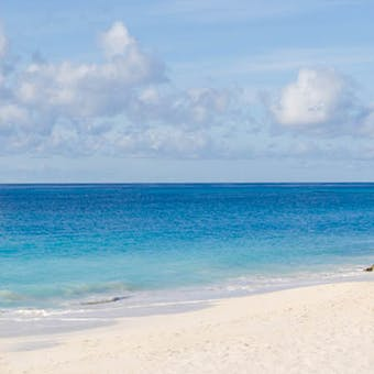 Relax on the beach whilst staying at Bougainvillea Beach Resort, Barbados