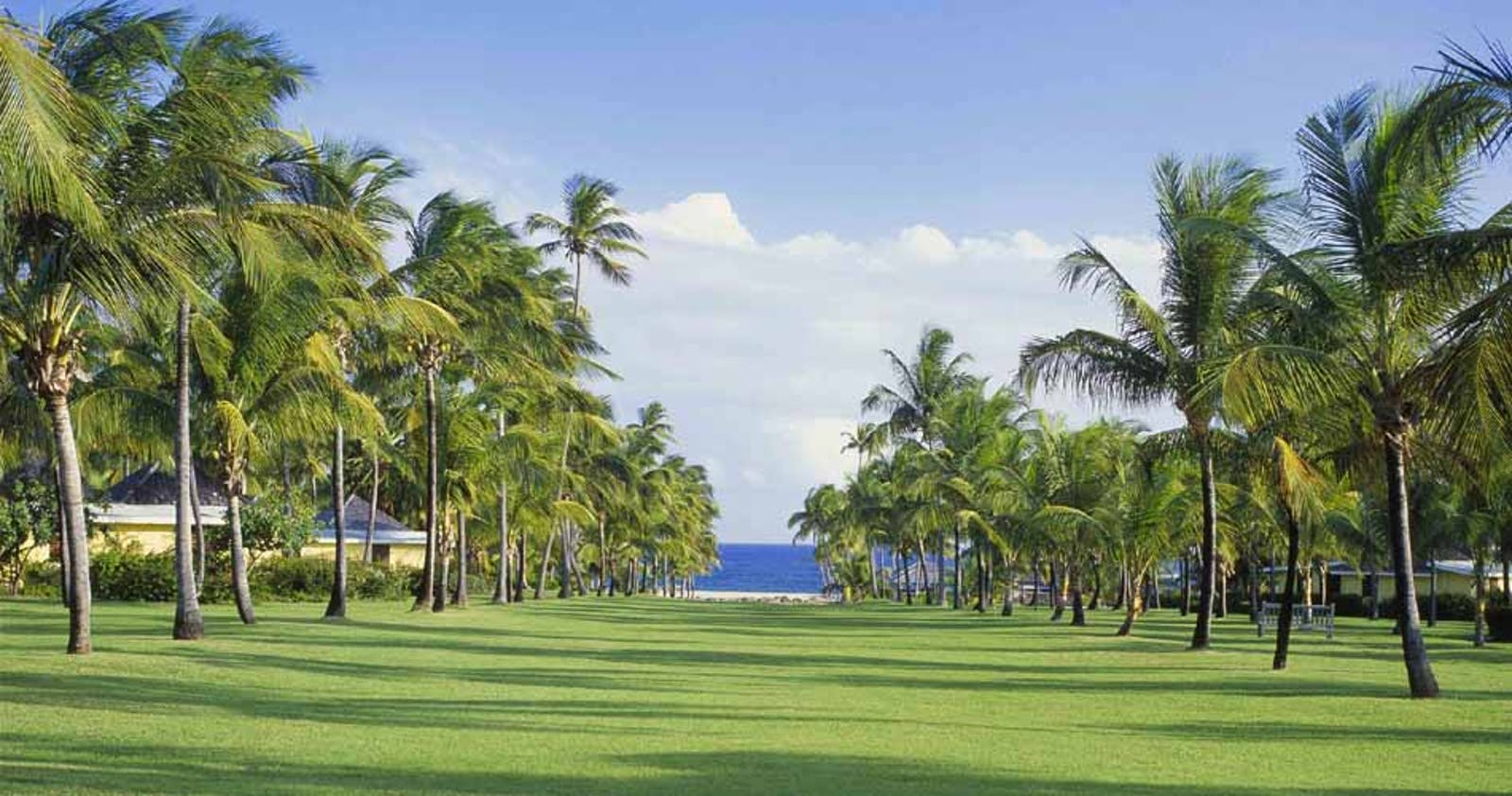 Picturesque Grounds of Nisbet Plantation Beach Club, Nevis