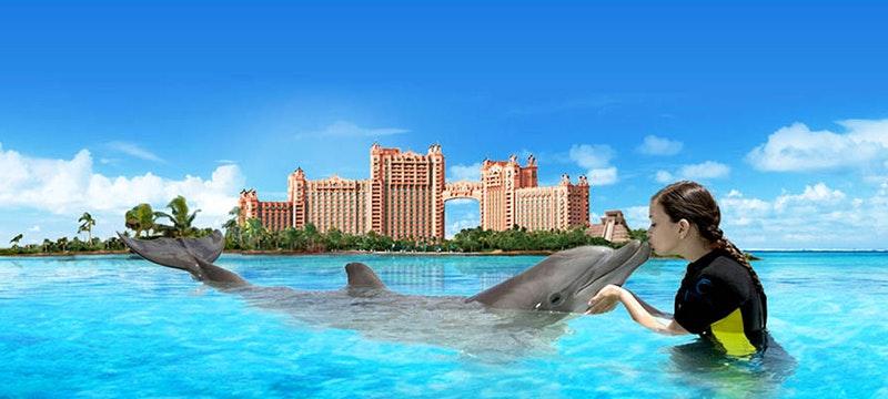 Meet dolphins at Atlantis, Bahamas