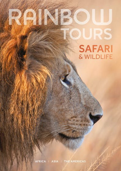 Safari & Wildlife Guide