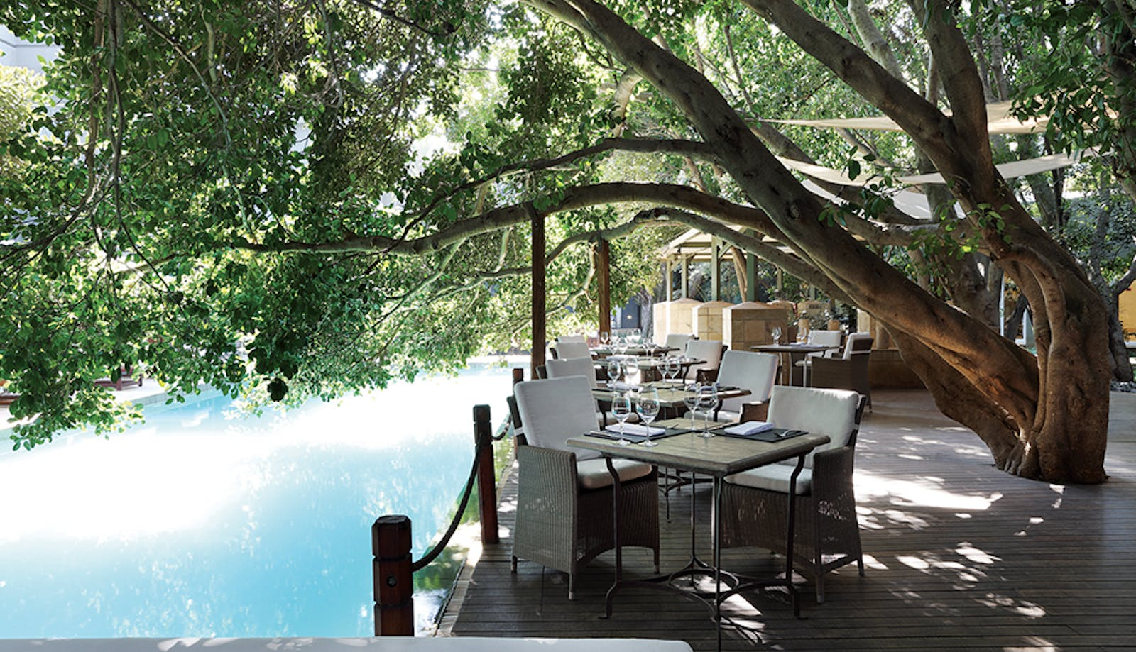 Fig Terrace at Saxon Boutique Hotel & Spa