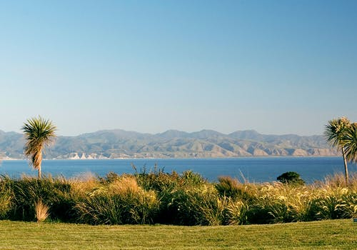 Stunning view from Wharekauhau Country Estate Palliser Bay, New Zealand