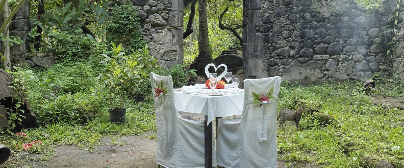 Jungle Dining Experience at Anse Chastanet, St Lucia