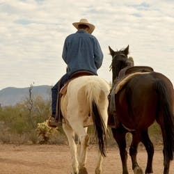 Luxury Arizona Ranch Holidays