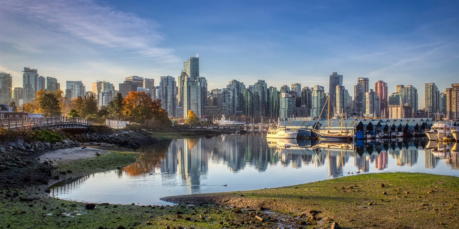 vancouver cityscape from stanley park