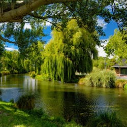 luxury christchurch and canterbury holidays