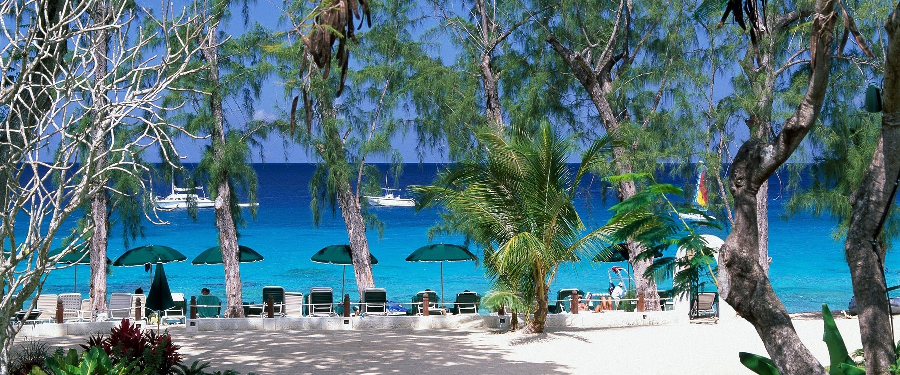 Beach area at coral reef club barbados