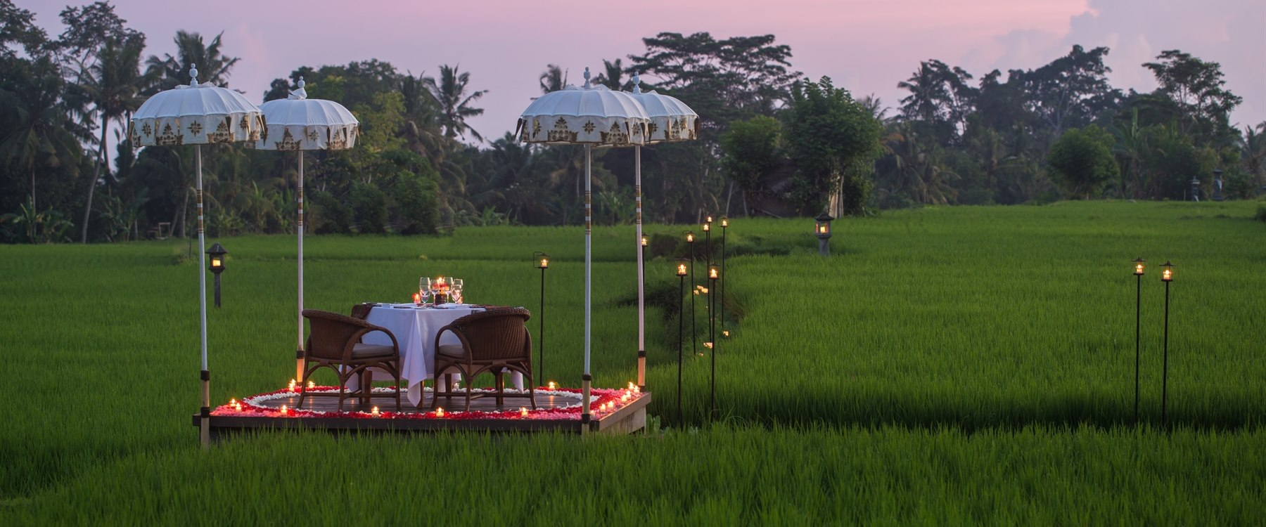 Rice paddy dining experience  at The Chedi Club Tanah Gajah