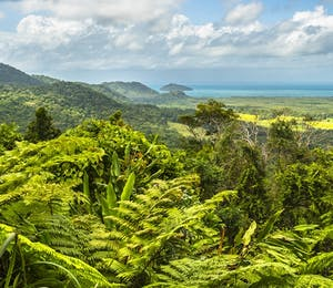 Luxury Daintree National Park Holidays