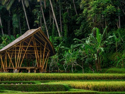 Experience Bali With Four Seasons