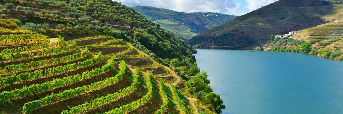 luxury holidays to douro valley portugal
