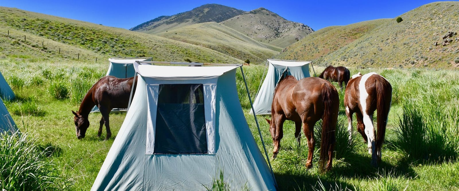 Camping at Medicine Lodge Horse Drives at Silver Spur Ranch