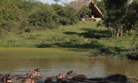 Exterior view of &Beyond Grumeti Serengeti Tented Camp