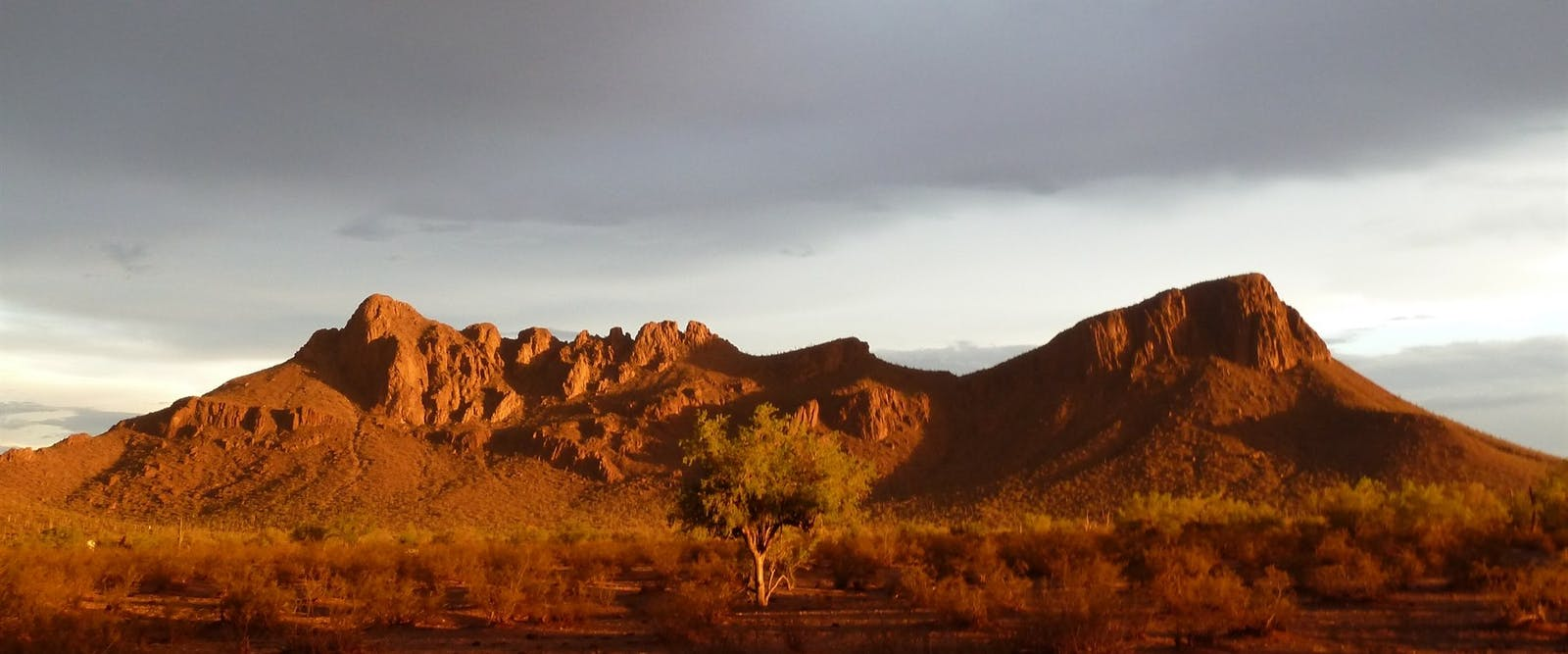 Landscape View At White Stallion Ranch, Arizona