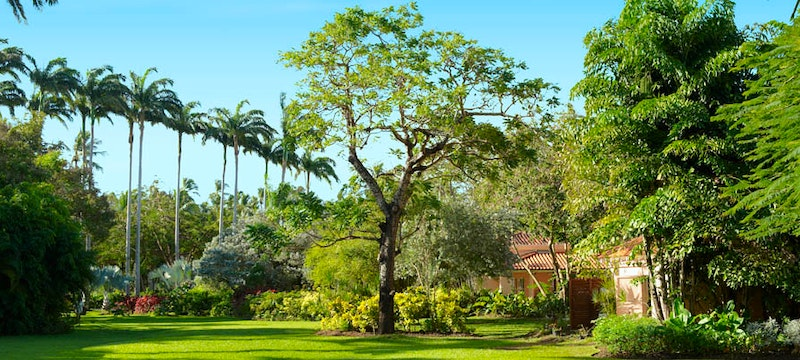Gardens at The Fairmont Royal Pavilion, Barbados