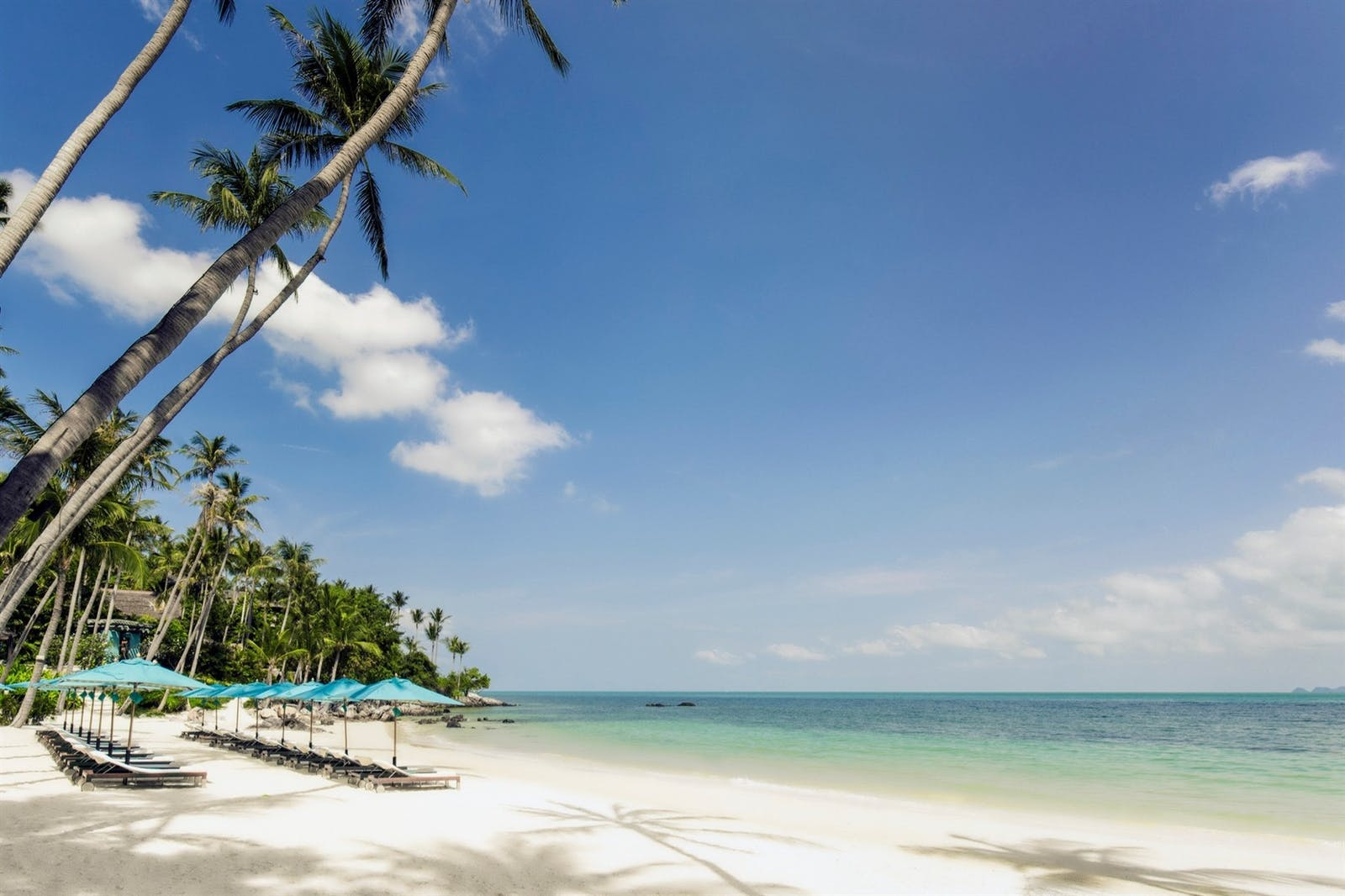 the beach at four seasons resort koh samui thailand