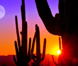 Arizona's Canyons, Deserts & Wild West Ranches