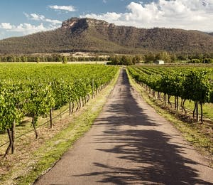 Luxury Hunter Valley Holidays