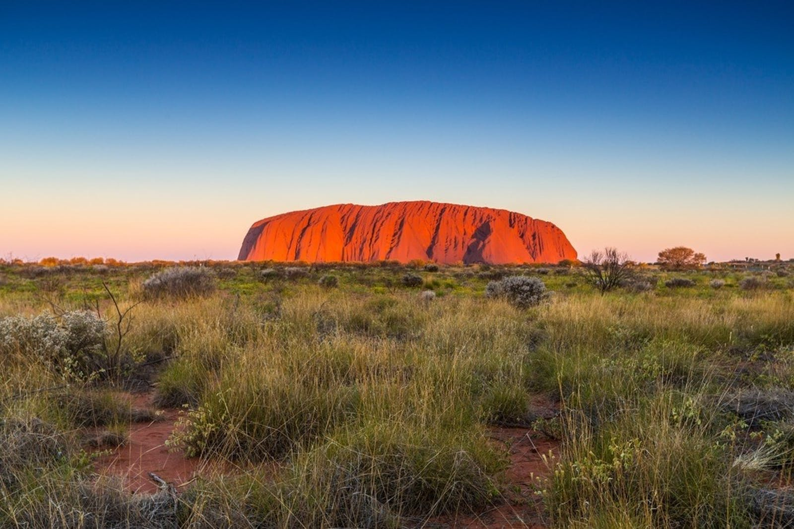 uluru ayers rock at sunset northern territory australia