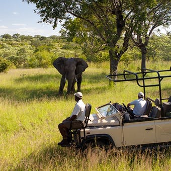 luxury south african safari lodges