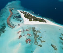 Experience a true Maldivian adventure at this idyllic resort with two private house reefs<place>COMO Cocoa Island</place><fomo>240</fomo>