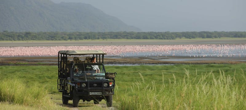 Game drive at &Beyond Lake Manyara Tree Lodge