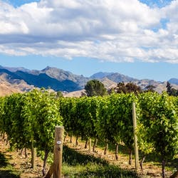 Luxury Marlborough and Blenheim Holidays
