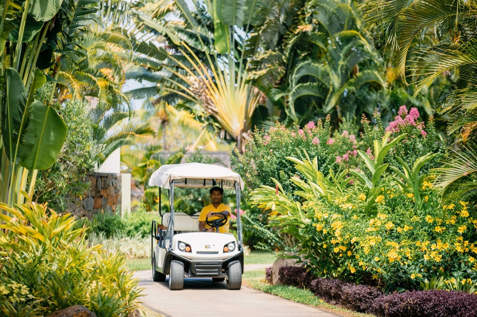 The resort gardens, Four Seasons Resort Mauritius at Anahita