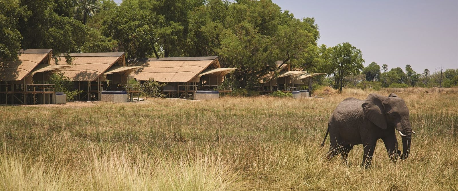 Exterior of Accommodation at Eagle Island Lodge, A Belmond Safari, Botswana