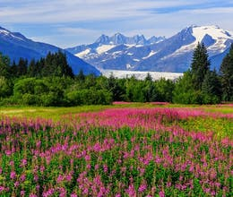Canadian Rockies Fly Drive Plus Alaska Cruise