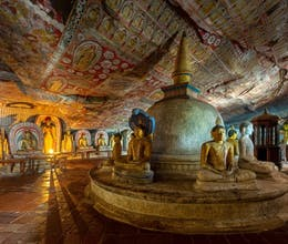 Discover Sri Lanka's highlights on this immersive tour<place>Highlights of Sri Lanka</place><fomo>277</fomo>