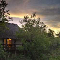 sabi sabi little bush camp, south africa