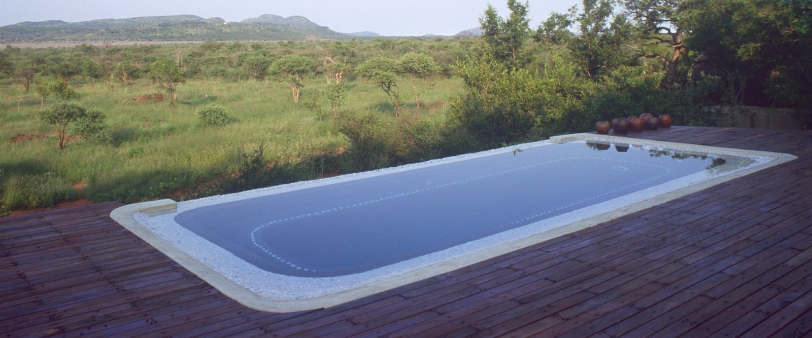 Pool at Madikwe Hills Madikwe Game Reserve