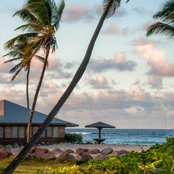 nisbet plantation beach club nevis