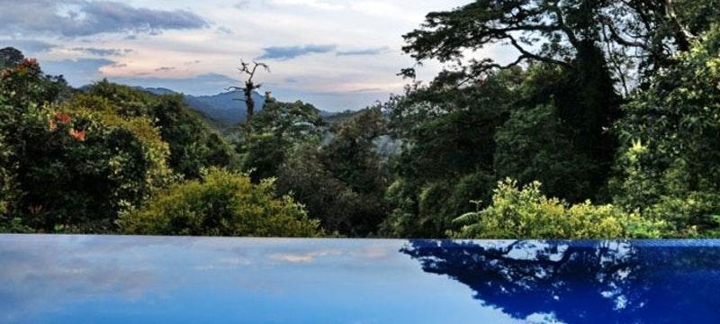 Outside pool at Nyungwe Forest Lodge, Rwanda