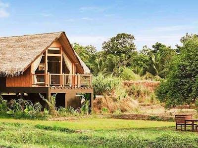 paddymarsh dwelling