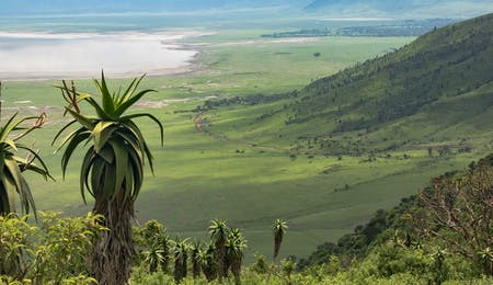Lake Manyara National Park – Ngorongoro Crater