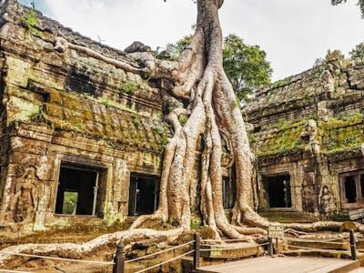 Siem Reap - The Temples