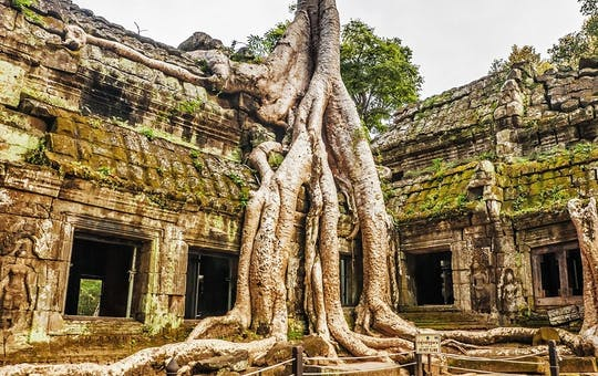 Angkor Temple Touring