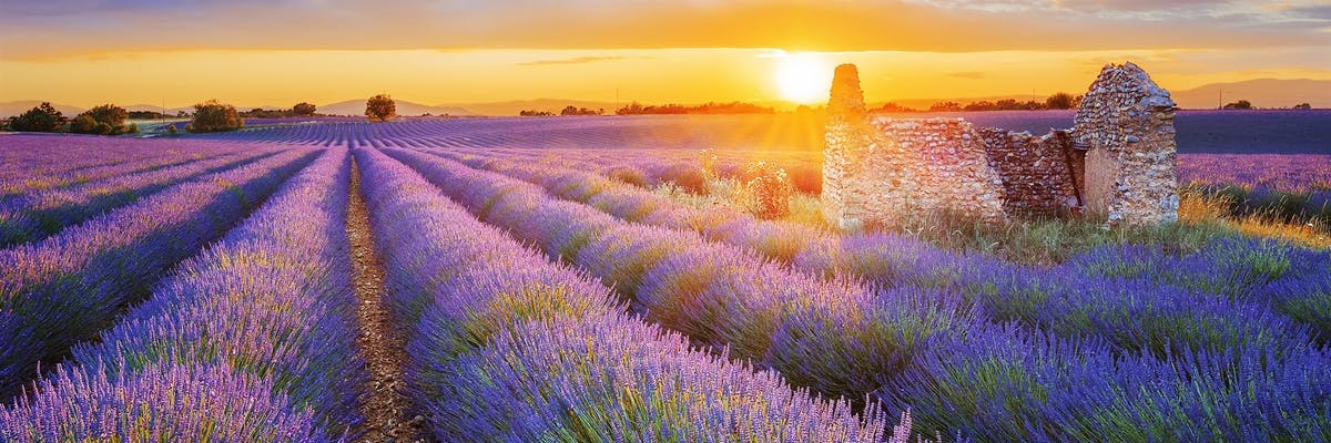 luxury holidays to provence france