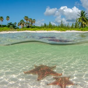 Luxury Cayman Islands Holidays