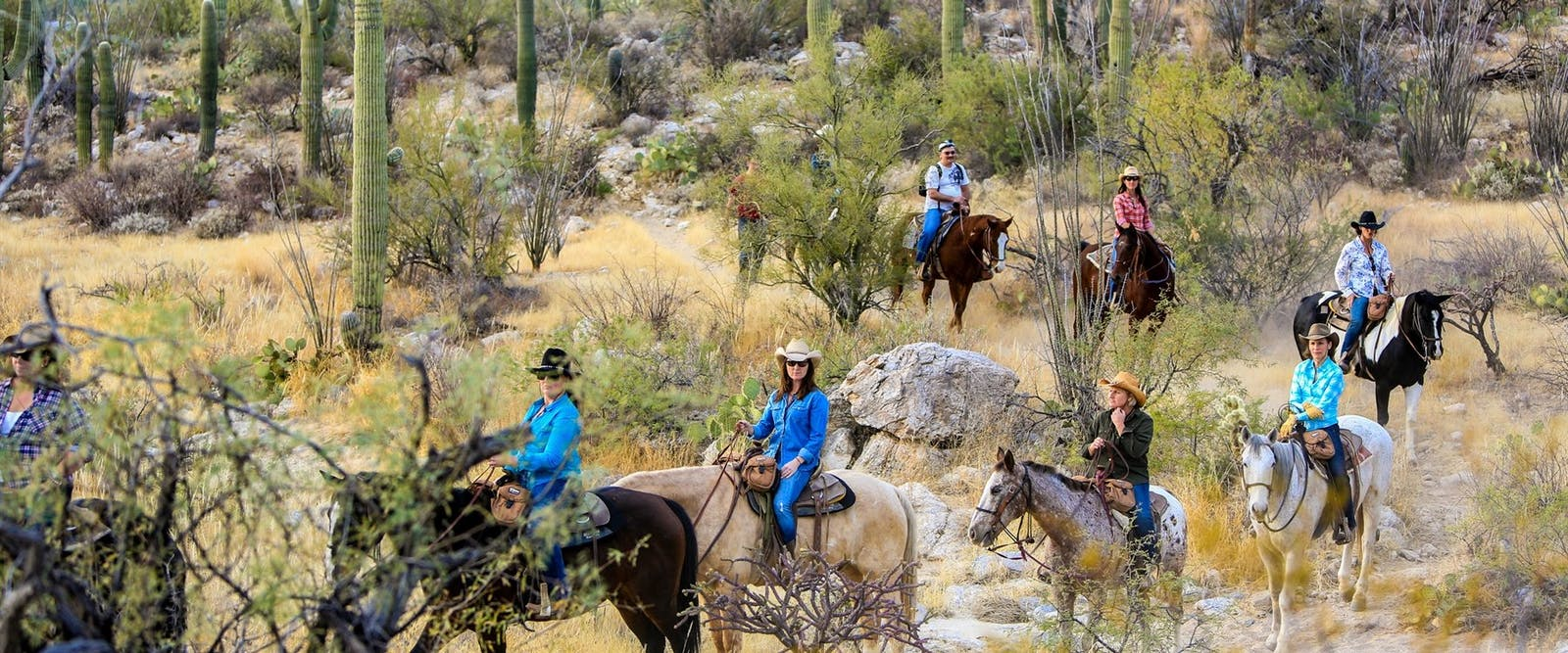 Legends Auto Ranch >> Tanque Verde   Arizona Ranch   Inspiring Travel Company