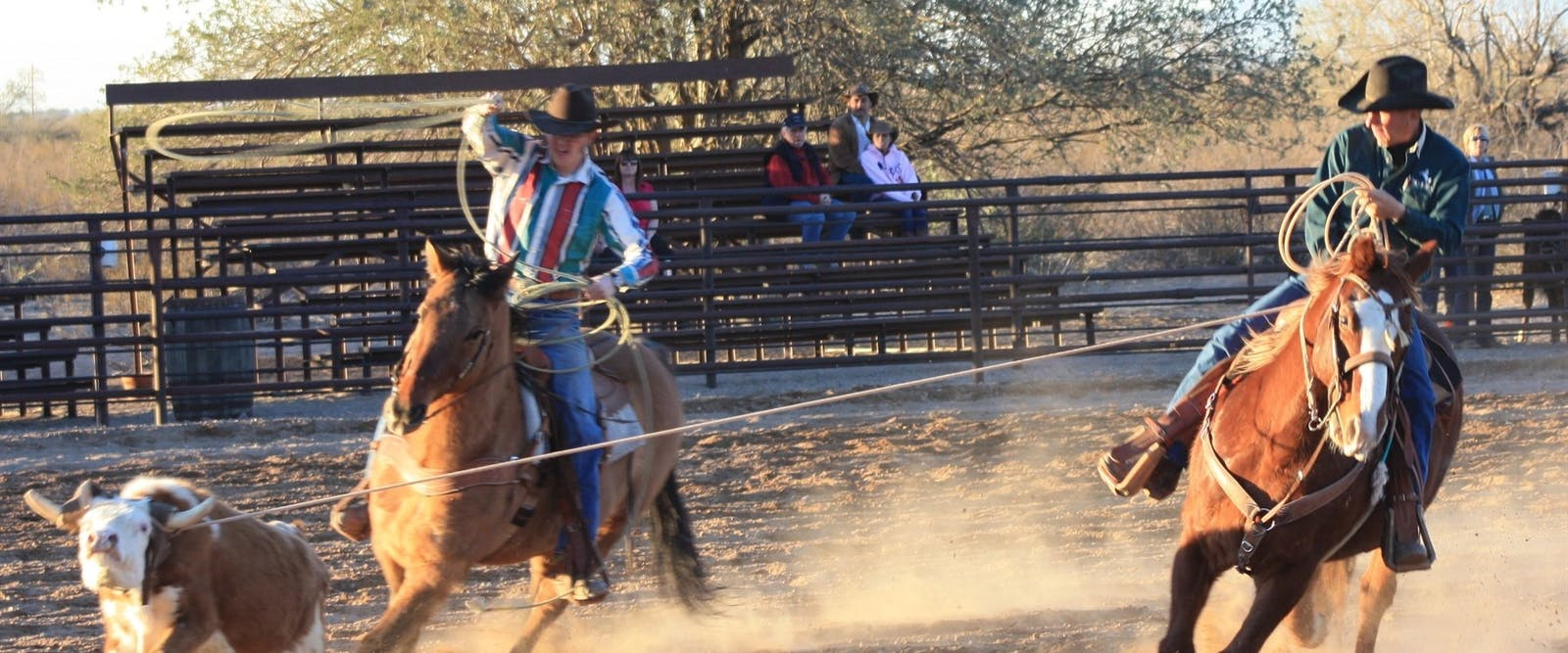 Rodeo At White Stallion Ranch, Arizona