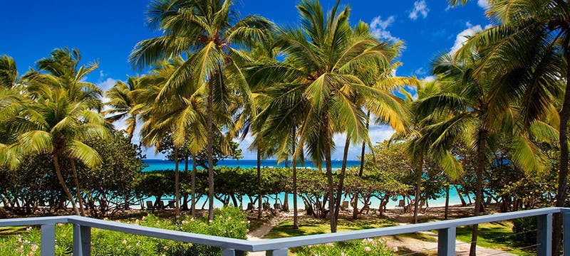 View from Tree House Suite terrace at Rosewood Little Dix Bay, British Virgin Islands